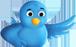 Следите за мной на Twitter!